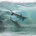 Sharks Inside a Wave by Sean Scott