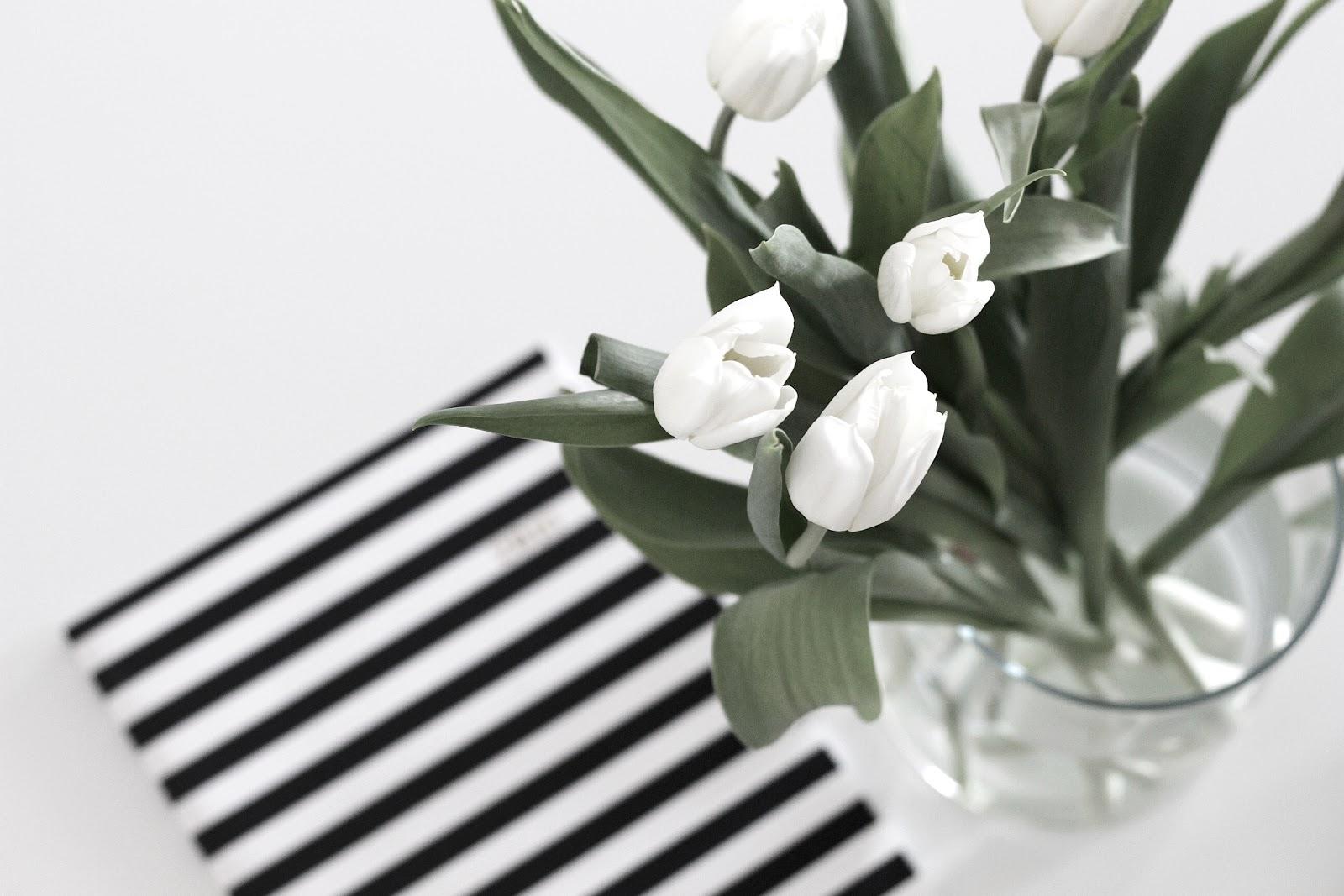 Blogging | 10 Things I Wish I Knew