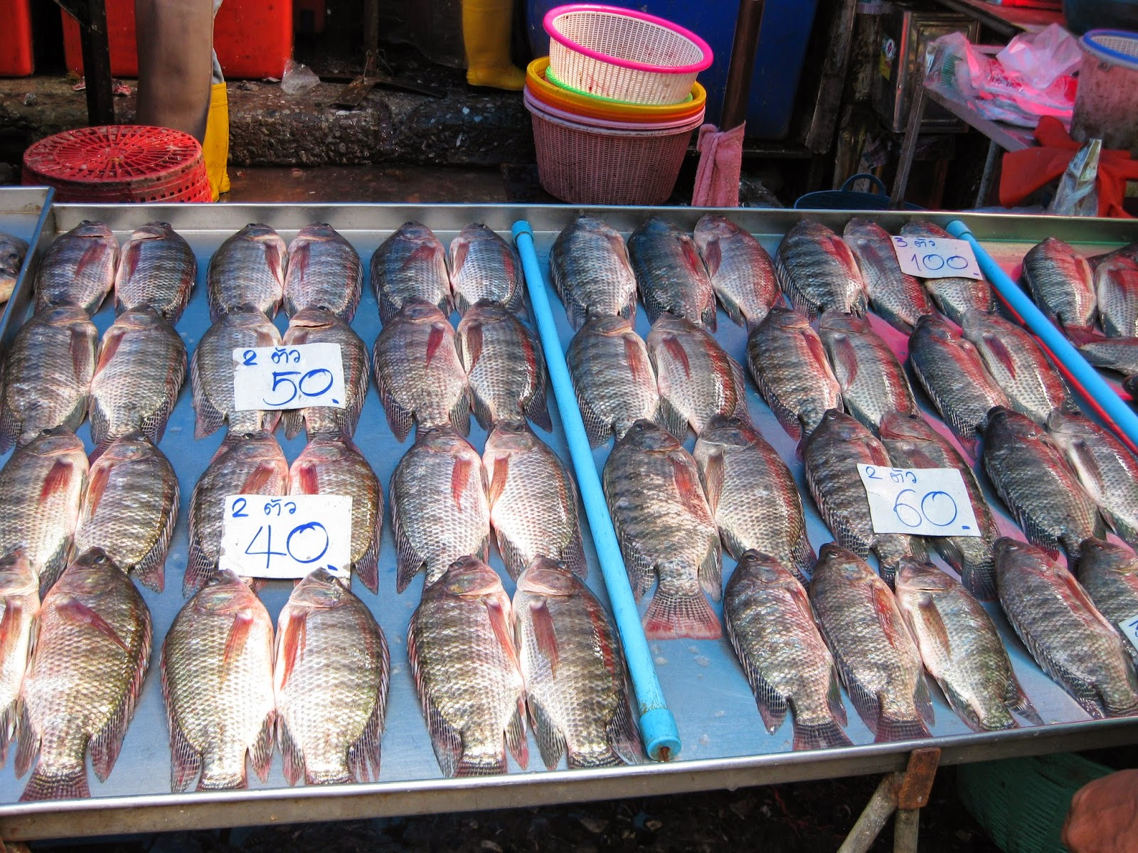 Bangkok - Wet market - the fish is so fresh that it jumps off the table