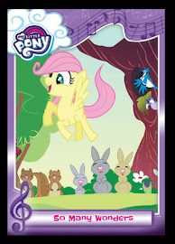 My Little Pony So Many Wonders Series 5 Trading Card
