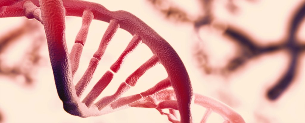 Οι επιστήμονες βρίσκουν ένα δεύτερο στρώμα πληροφοριών κρυμμένο στο DNA μας!!!