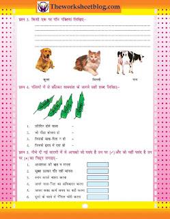 Free CBSE hindi printable  Practice Worksheet for Hindi Grammar.