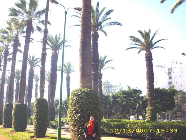 parcul-arab-din-casablanca