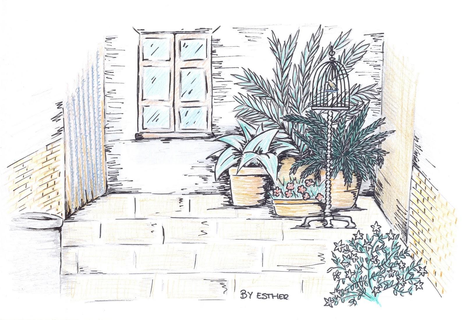 Patio De Una Casa Para Colorear Plantas Para Colorear