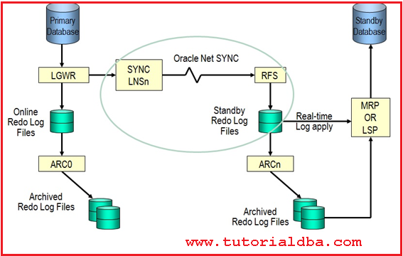 oracle dataguard application architecture diagram including end users