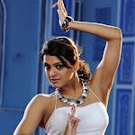 Tashu Kaushik Hot Stills