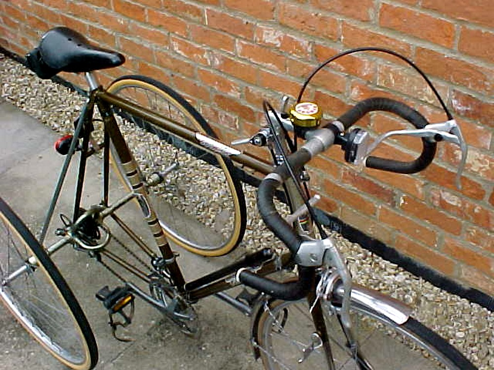 Trikes and odd bikes rogers trike and trike conversion for Fish house drop down wheel kit