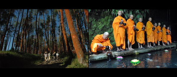Hutan Pinus dan Umbul Jumprit