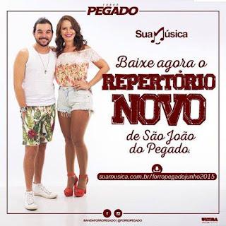 FEVEREIRO 2013 FORRO BAIXAR PEGADO