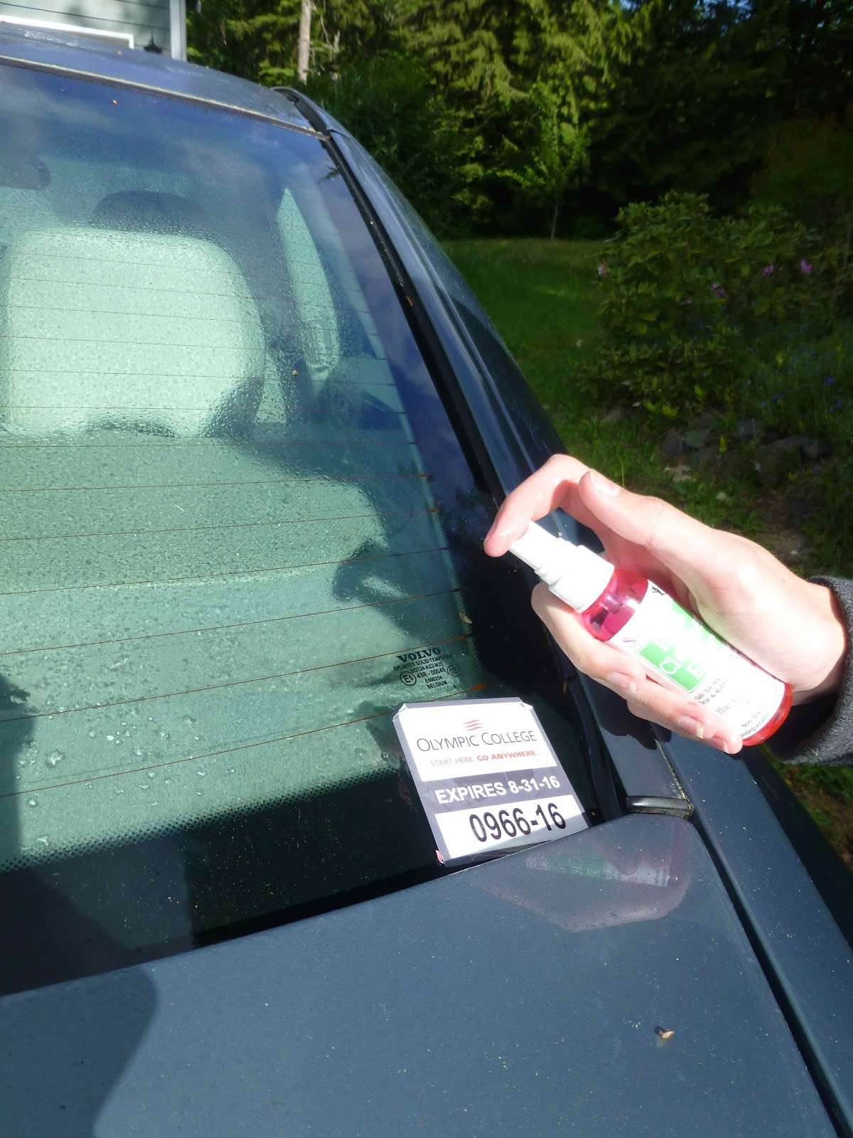How To Remove Stickers From Car Window >> Scraperfect Removing Car Window Sticker Decal Sticky