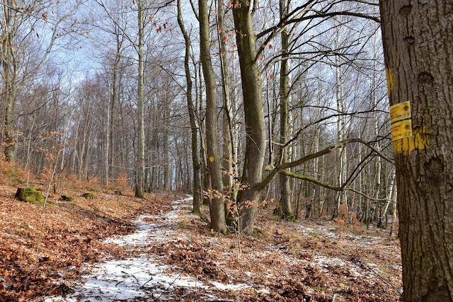 Wzgórze Radziwiłłówka