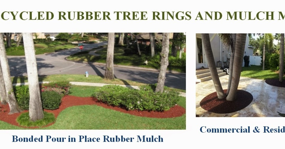 Green Topics How To Go Green Recycled Rubber Tree Rings
