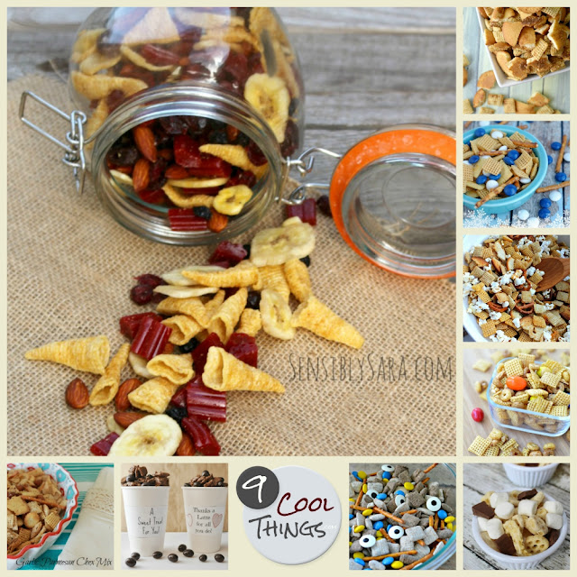 9 Cool Snack Mix Recipes | www.9CoolThings.com