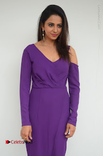 Actress Rakul Preet Singh Latest Stills in Beautiful Long Dress  0047.JPG