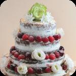 Naced Cake Torte