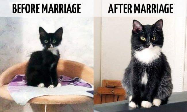 WORDLESS WEDNESDAY : BEFORE & AFTER MARRIAGE