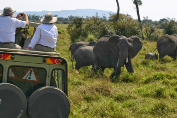 NBA2 East Africa Safari in style, Adventures with a difference!