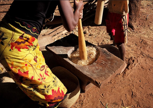 Grinding rice in Madagascar