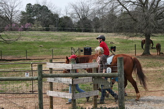 Butterfly Dreams Farm: Committed to Improving the Lives of Autistic Children through Horses