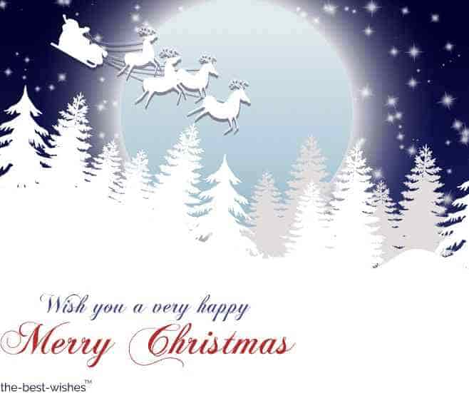 wish you a very happy merry christmas
