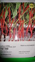 benih petani,tahan virus, buah lebat, Tani Murni, Cabai TM 999, tahan layu, tahan cekaman calcium