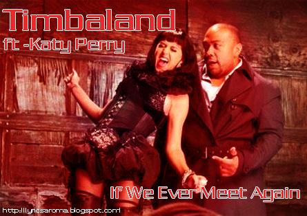 if we ever meet again timbaland lyrics apologize