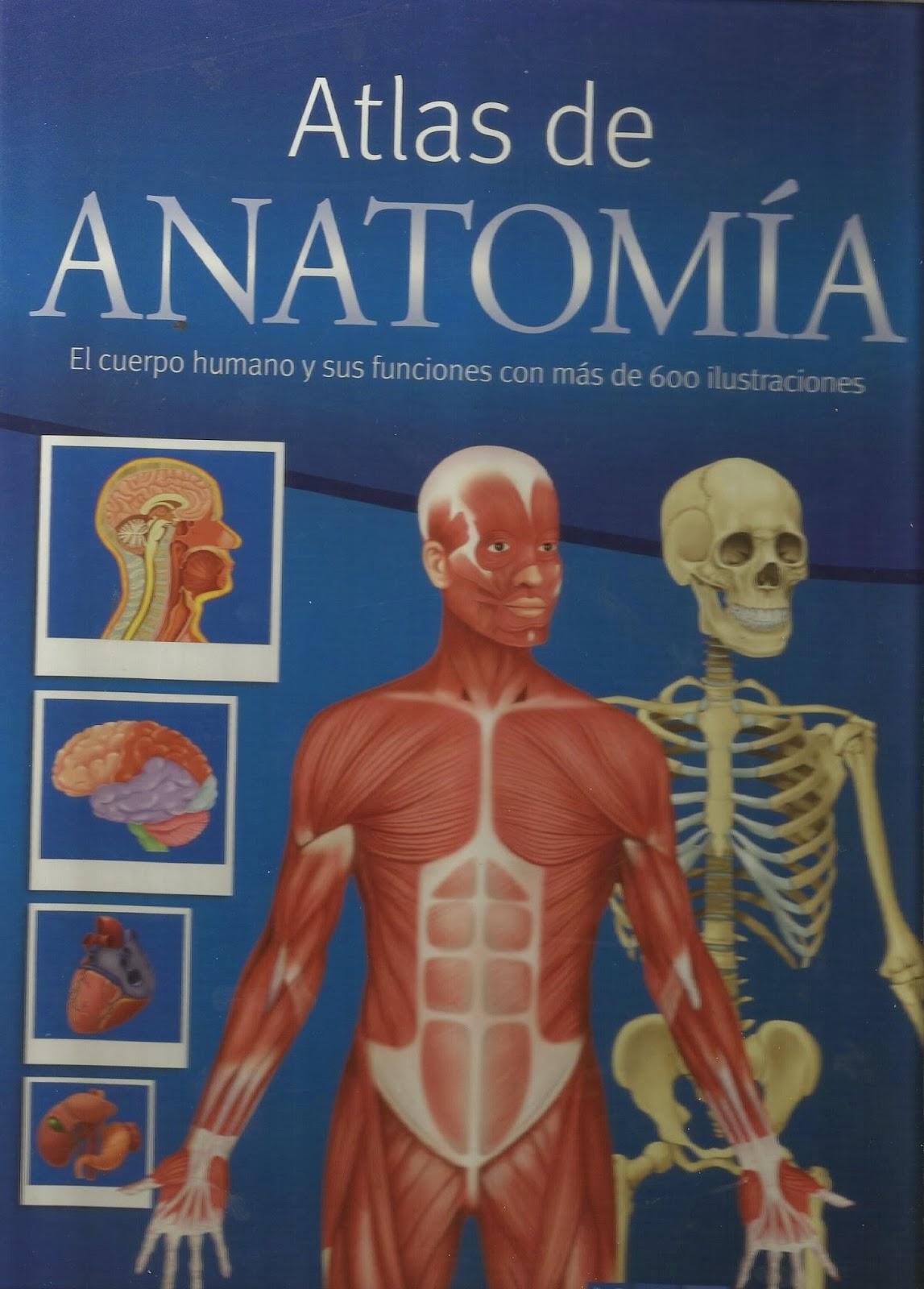 Nuestros cuentos favoritos: El cuerpo humano - Mis trucos para educar
