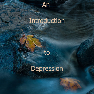 An Introduction to Depression - A Summary of Video Lecture