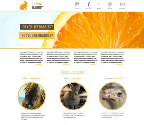 Orange Rabbit – Free PSD Web Template