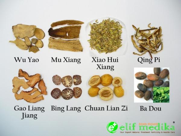 Herbal Formulasi Hernia