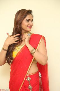 Actress Ashwini in Golden choli Red saree Spicy Pics ~  105.JPG