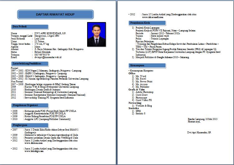 Contoh Curriculum Vitae Format Bahasa Inggris Di Professional