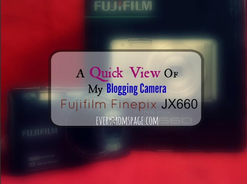 A Quick View of My Blogging Camera Fujifilm Finepix JX660