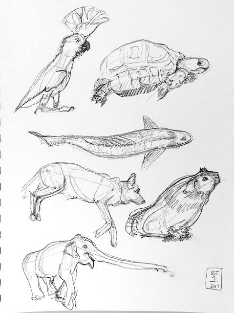 Daily Art 10-07-17 gesture studies of animals
