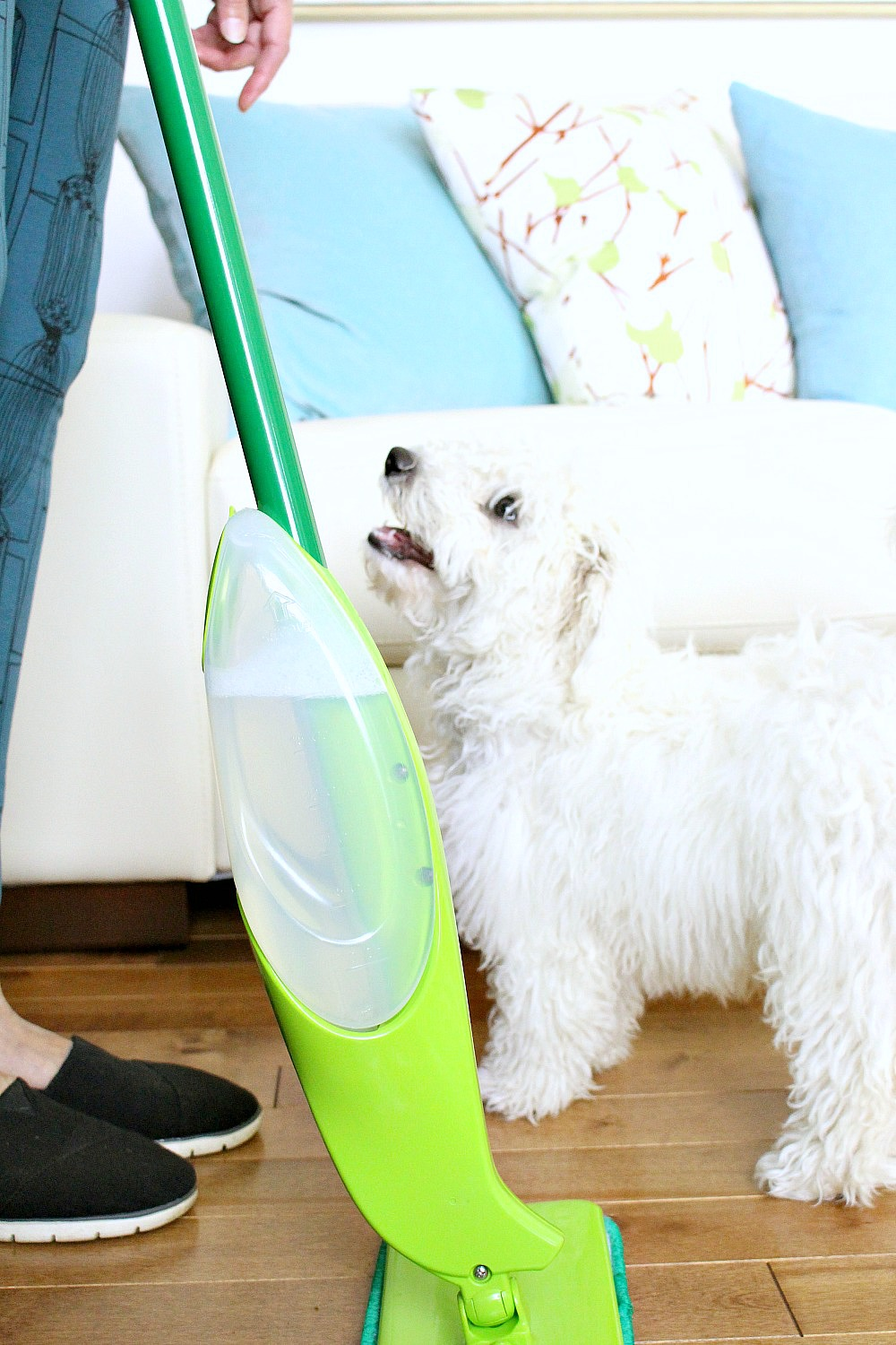 My Tips Tricks For Keeping House Clean With Two Dogs
