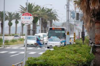 ヤシの木が両脇にならぶ大通りを向かってくるバスをバス停から眺める