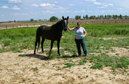 My new heart horse, Skeeter Bang
