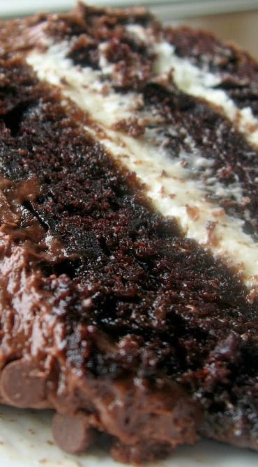 This cake is moist and has the perfect crumb. I cannot imagine making a chocolate cake using any other recipe. It is so easy to make and ...