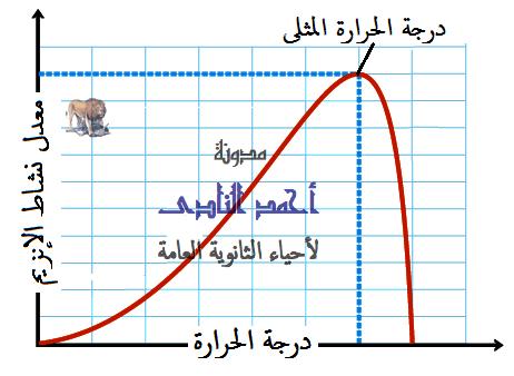 الإنزيمات - تأثير درجة الحرارة  - درجة الحرارة المثلى - مدونة أحمد النادى- أحياء الثانوية العامة