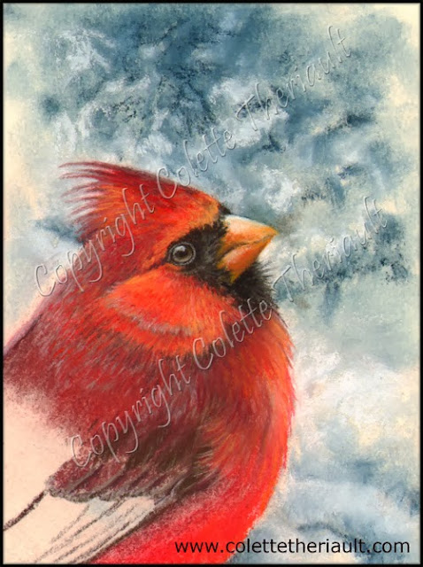 northern cardinal wildlife pastel painting progress on the easel