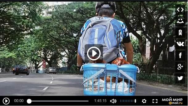 CLIC PARA VER VIDEO Rice Rhapsody - PELICULA - China - 2004