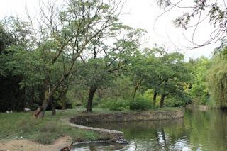 Faenza Parco