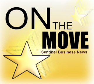 On the Move! Following the rise of successful members from our community