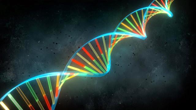 Codigo genetico y estudio del delincuente