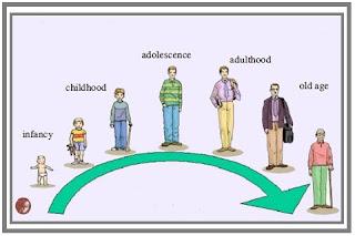 Faktor Faktor yang Mempengaruhi Pertumbuhan dan Perkembangan Manusia