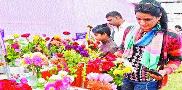 प्रदर्शनी में बिखरी विभिन्न किस्मों के गुलाबों की रंगत