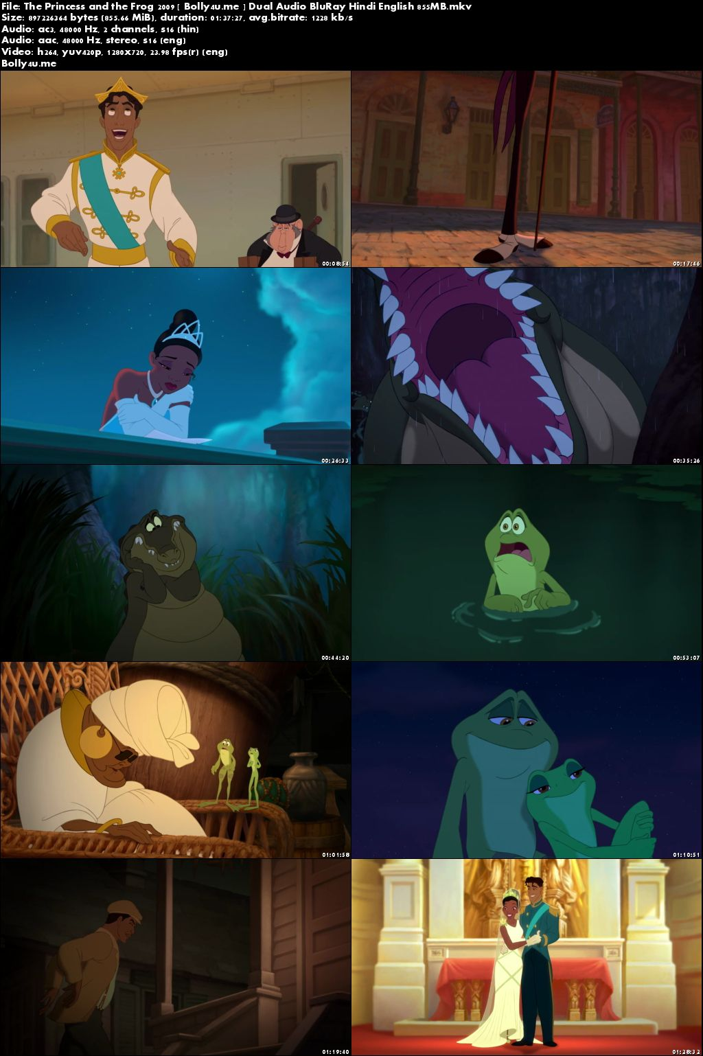 The Princess and the Frog 2009 BRRip 300MB Hindi Dual Audio 480p Download