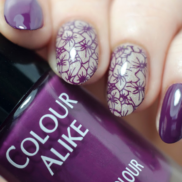 "Colour Alike ""Purple Plum"""