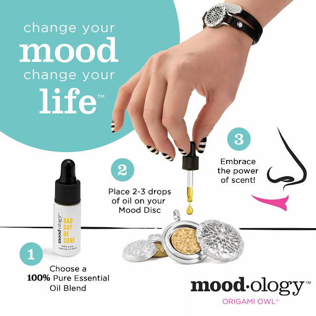 Moodology + Sentiments Collection Pack by Origami Owl available at StoriedCharms.com