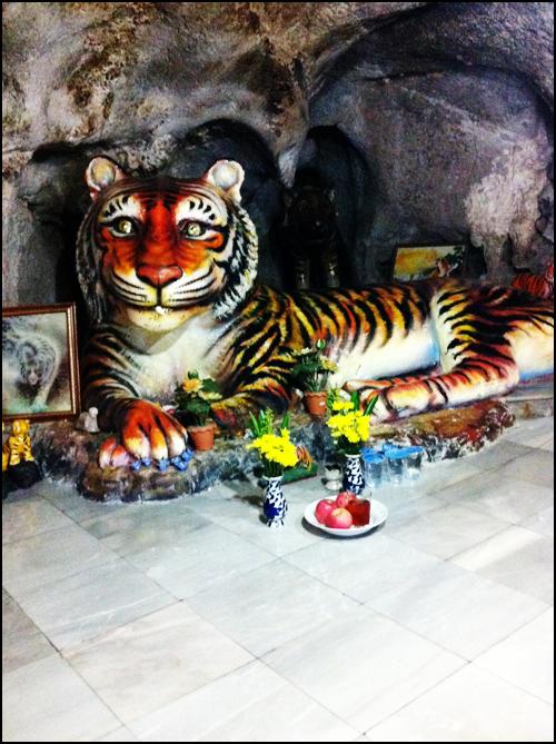 i.am.niana: Tiger Cave Temple Krabi : Climbing 1,237 Steps